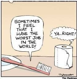 brush and the toilet paper